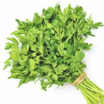 Organic Coriander Leaves 120g